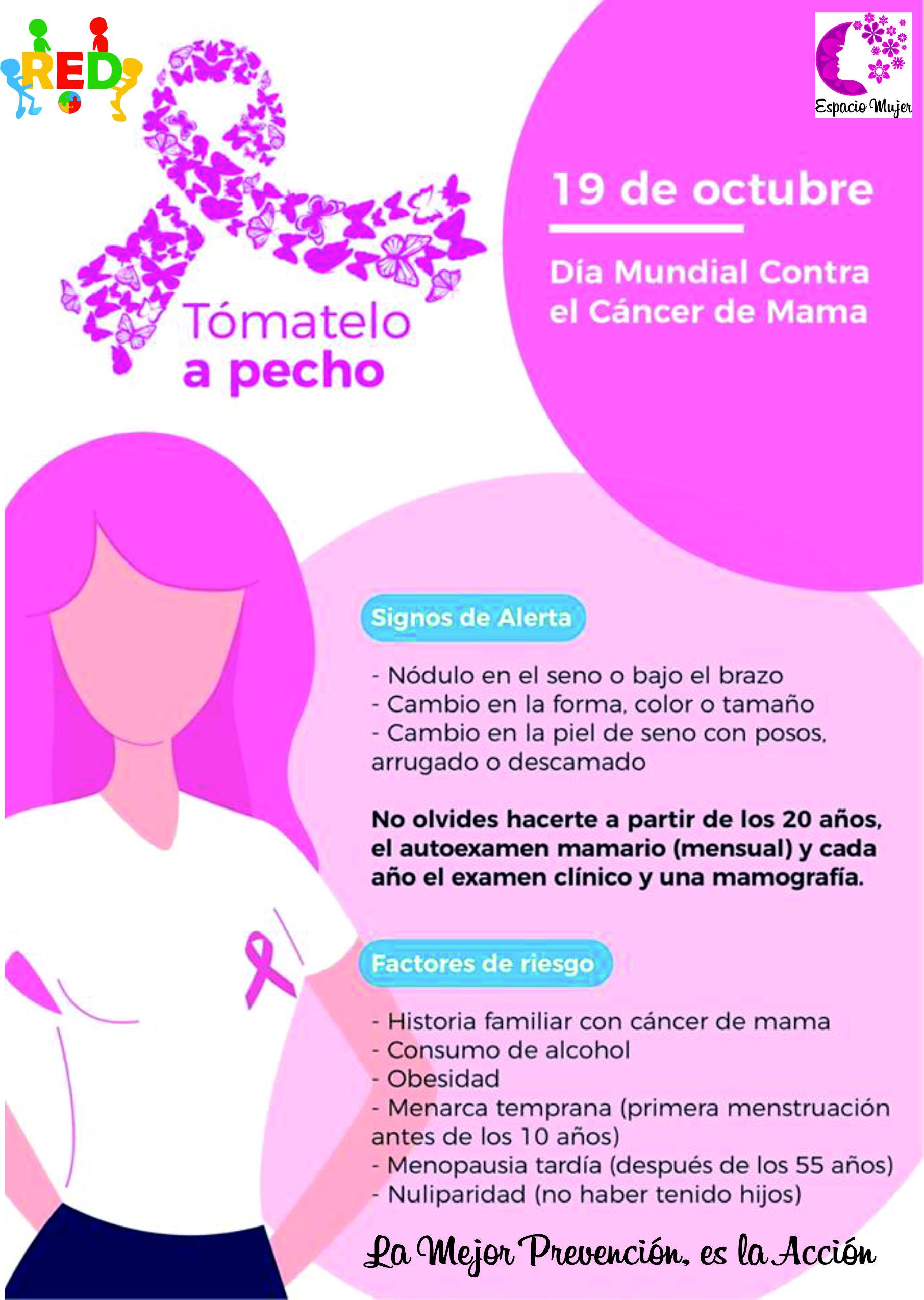 folleto cancer de mama